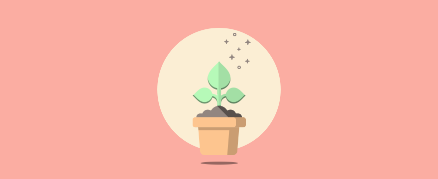 a plant that grows