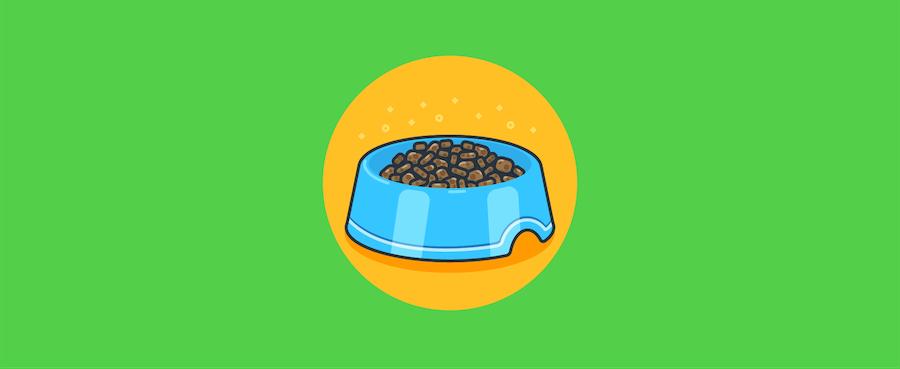 Bowl with dog food.