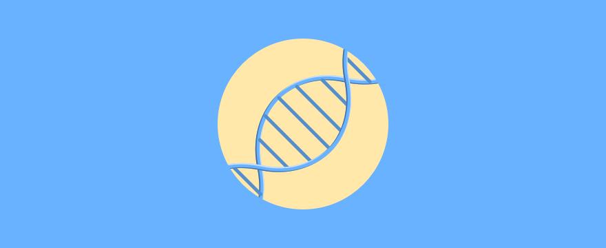 DNA-Strang – Titelbild zum Post Unternehmenswerte schaffen